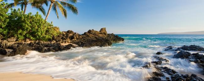 Say Aloha! Win trip to Hawaii!